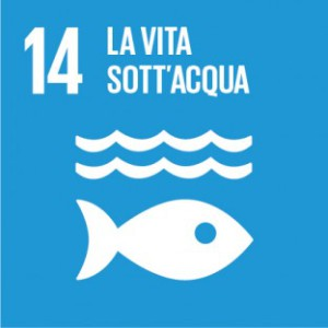 Sustainable_Development_Goals_IT_RGB-14